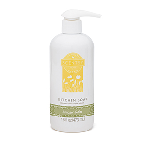 https://sootless.scentsy.us/shop/p/40755/amazon-rain-kitchen-soap